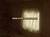 шторка на окне пчелосон